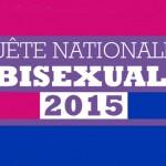enquête sur la bisexualité 2015 sur fond de drapeau