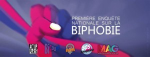 premiere-enquete-nationale-sur-la-biphobie